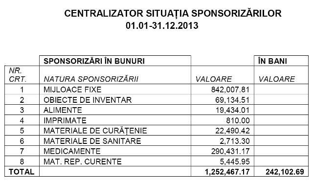 sponsorizari 2013