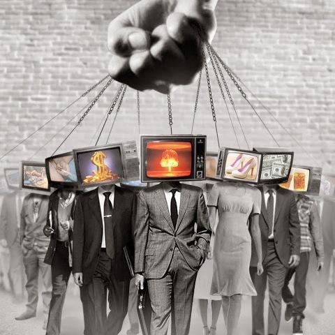 tv (4)