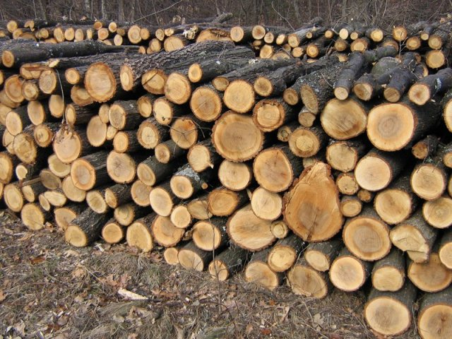 lemn-de-foc-metri-ster.jpg