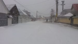 tg-iarna-2017-01
