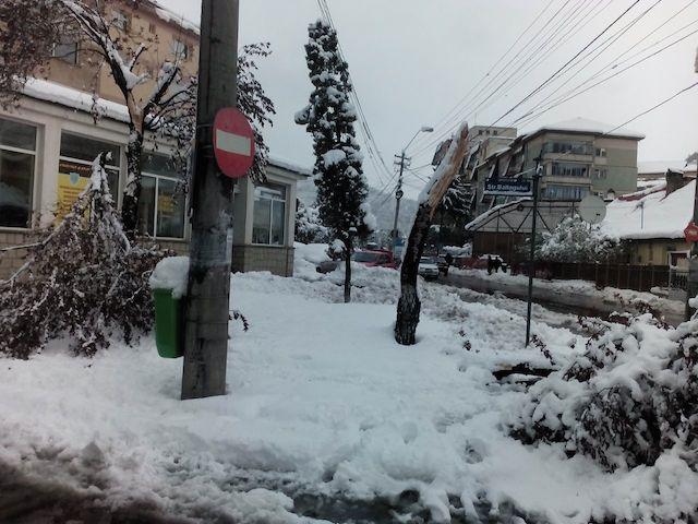 IMG_2017-04-21 10:45:29