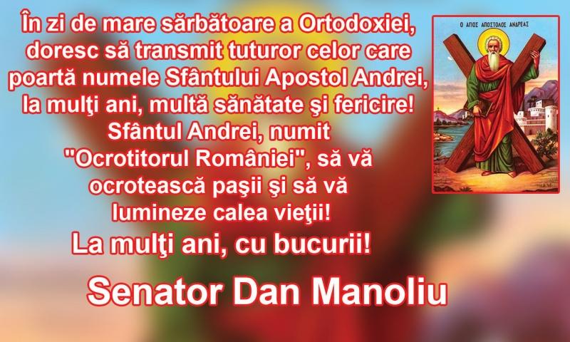 Dan-Manoliu.jpg