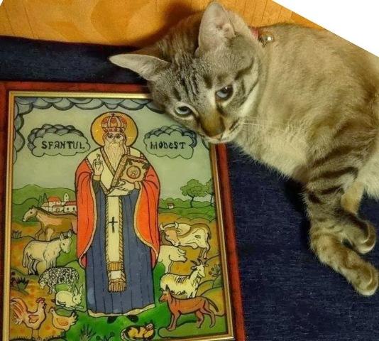 Sf-Modest-ocrotitorul-animalelor.jpg