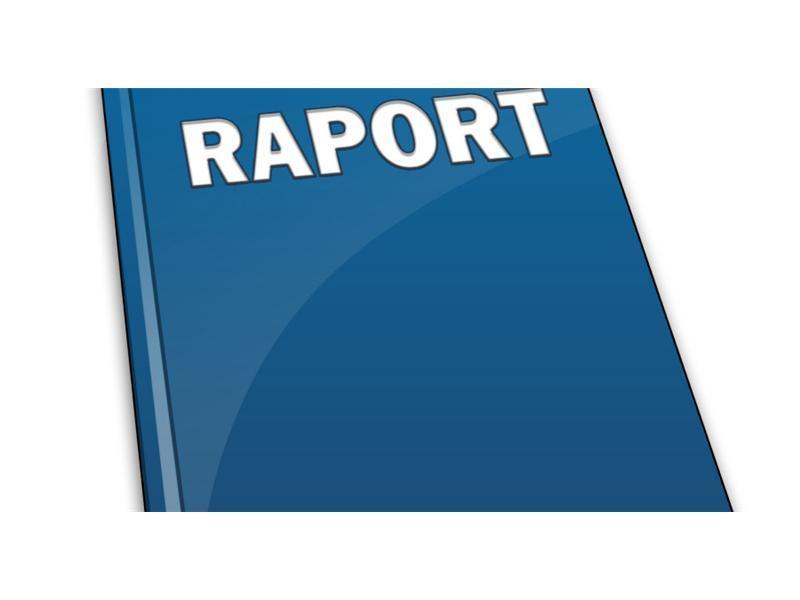 raport.jpeg