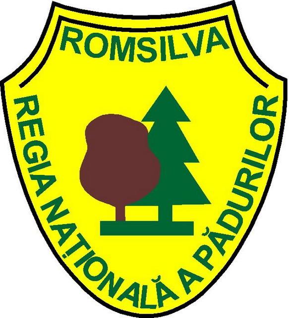 romsilva-logo.jpg