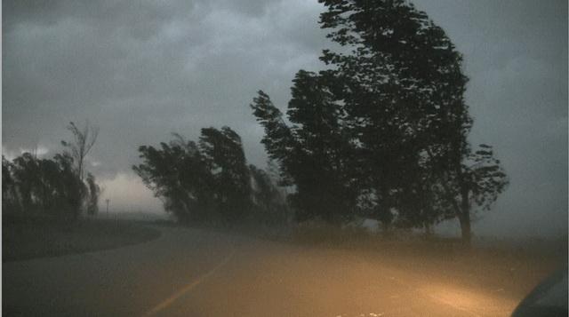 furtuna-02.jpg