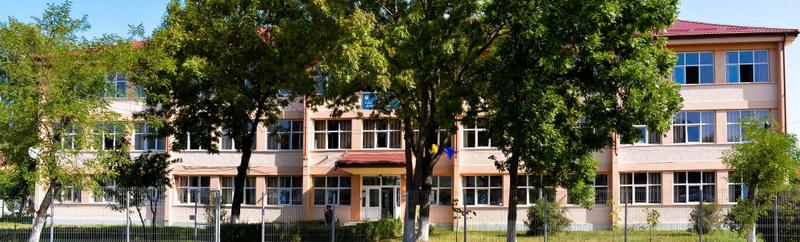 liceul-dimitrie-leonida.jpg