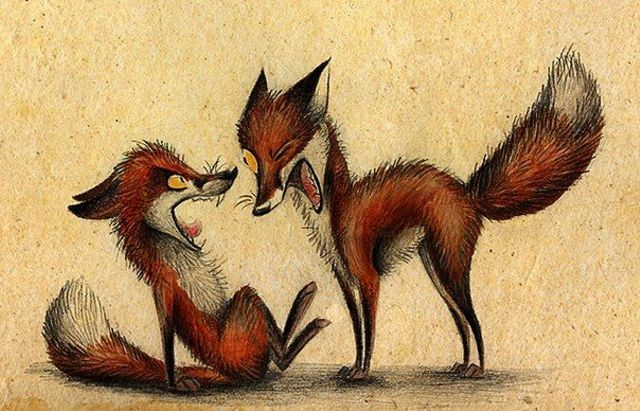 red-foxes-3757773_1920.jpg