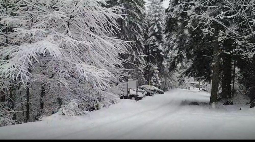ninsoare-la-durău-1000x556.jpg