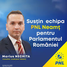 marius-Nechita.jpg