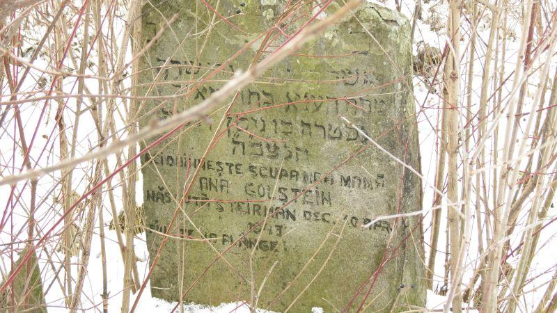 cimitir evreiesc sarata 2021 (10)