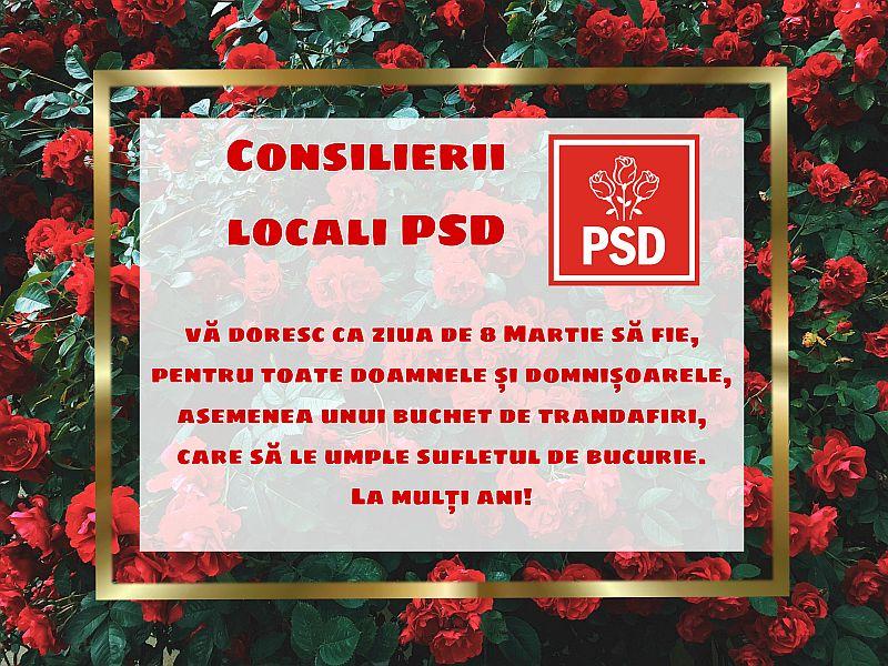 Consilierii locali PSD