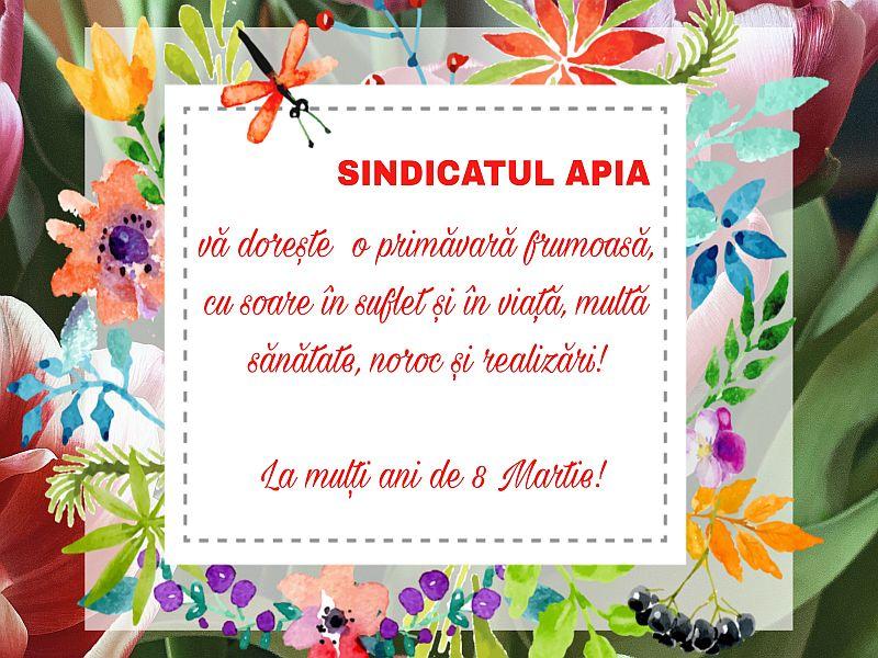 Sindicat APIA