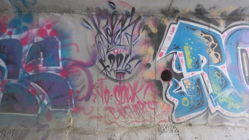 04 CUEJDI PEREŢII DIN BETON, ZONA CU GRAFITTI