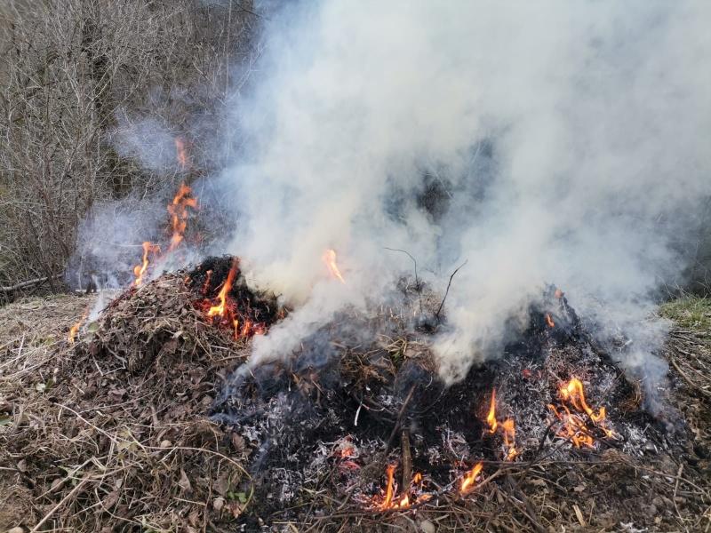 incendiu-crengi-1.jpg