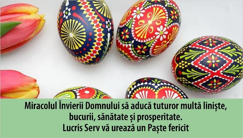 Lucriis Serv