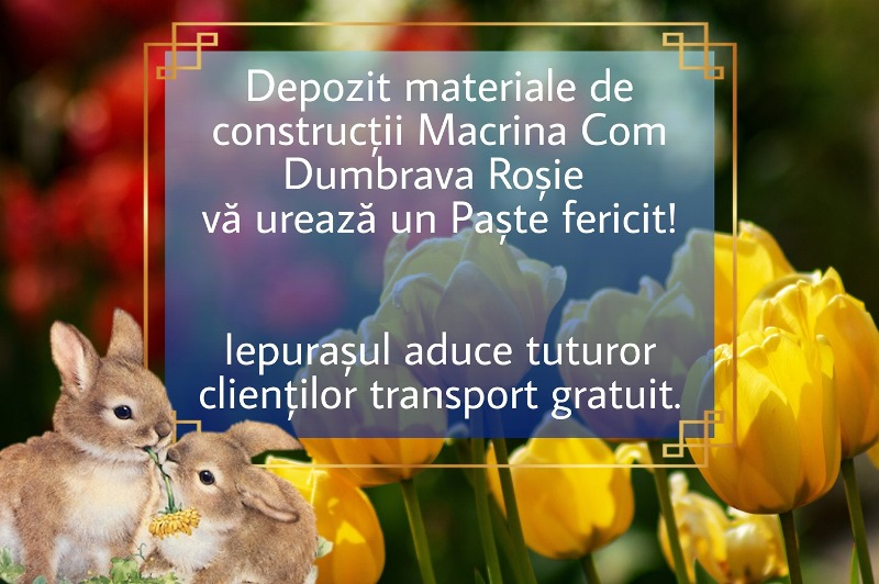 Macrina Com