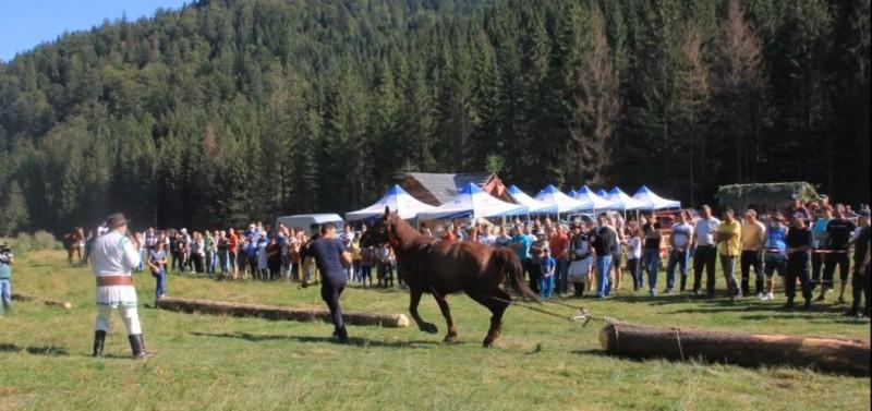 grinties-festival.jpg